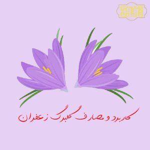 کاربرد گلبرگ زعفران